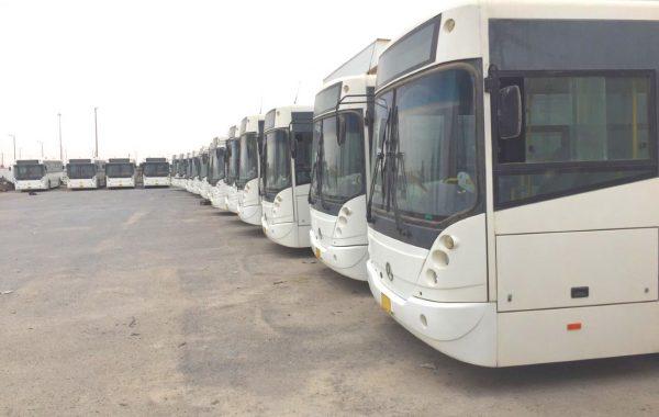 100 Stück Mercedes Busse